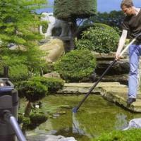 Искусственный водоем на дачном участке: правила установки и ухода