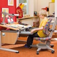 Школьная мебель — парты для дома