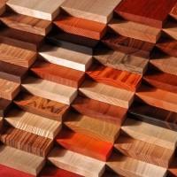 Двери. Виды древесины для изготовления дверей