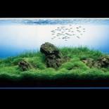 Аквадизайн в интерьере