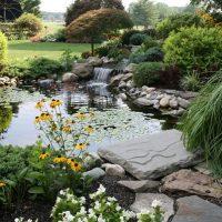 Водные элементы ландшафтного дизайна